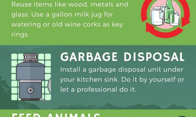 Top 5 Eco-Friendly Junk Disposal Tips